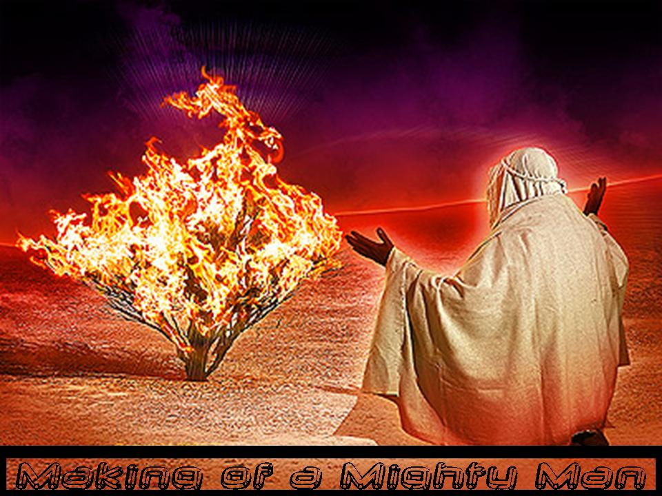 Image result for moses burning bush