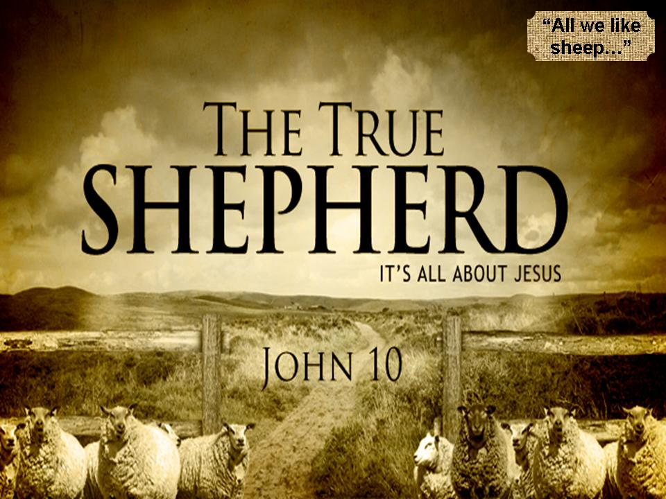 """Jesus, the True Shepherd"""" - John 10"""