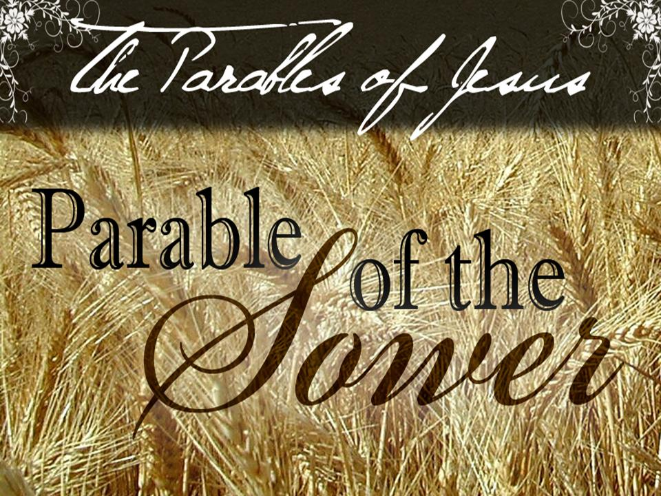 Parable of the Sower - Matthew 13 - Seed, Soil, wayside, stony ...